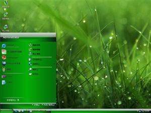 绿色植物电脑主题