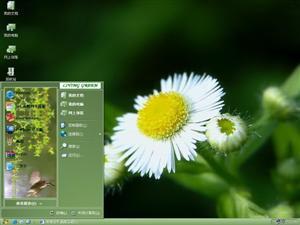 绿色清新自然电脑主题