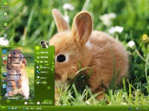 可爱小兔电脑主题