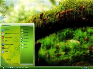 丛林摄影电脑主题