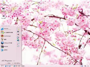 樱花电脑主题