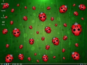可爱小瓢虫电脑主题