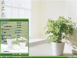 清新盆栽电脑主题
