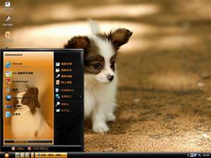 可爱小狗电脑主题