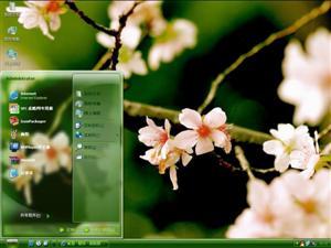 樱花摄影电脑主题