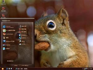 可爱花栗鼠电脑主题