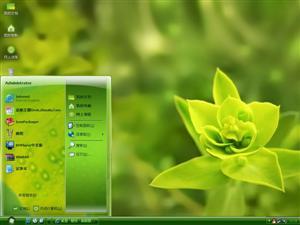 绿叶电脑主题