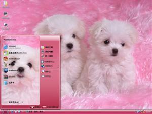 可爱卷毛犬电脑主题