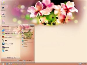 美丽的花卉电脑主题