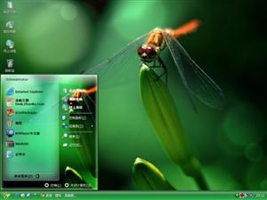 美丽的蜻蜓电脑主题