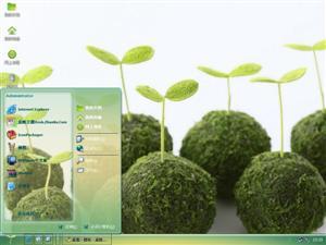 绿豆芽电脑主题