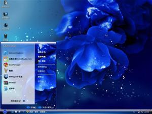 绚丽蓝色花朵电脑主题