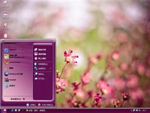 美丽的罗布麻电脑主题