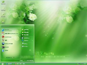 蔷薇花电脑主题
