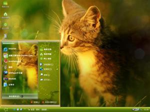 猫儿电脑主题