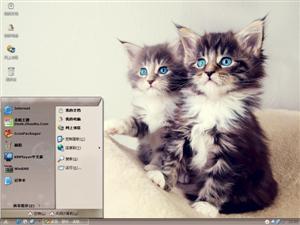 猫咪有约电脑主题