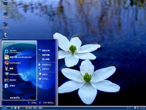 荷塘花朵电脑主题