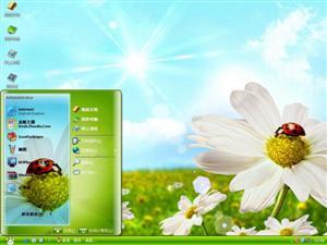 小瓢虫的春天电脑主题