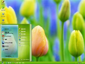 郁金香的花语电脑主题