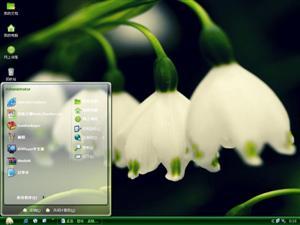 铃兰植物电脑主题