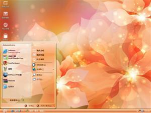 梦幻手绘花朵电脑主题