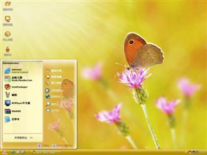 蝴蝶野花电脑主题