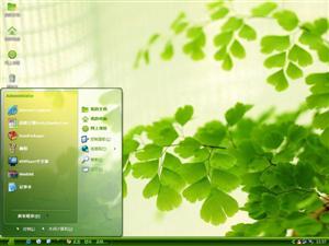 绿叶盆景电脑主题