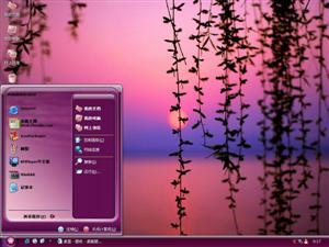 夕阳下的树枝电脑主题