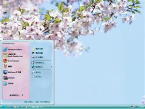 粉色樱花电脑主题