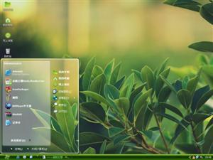 植物绿叶电脑主题