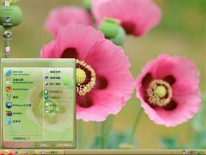 夏日花朵电脑主题