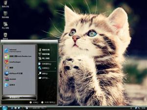 猫猫许愿电脑主题