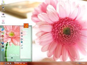 温馨夏菊电脑主题