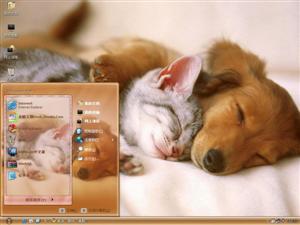 懒睡小狗电脑主题