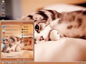 可爱萌猫电脑主题
