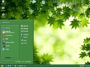 绿色枫叶电脑主题