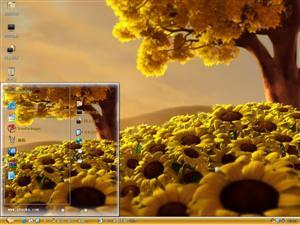 美丽的向日葵风景电脑主题