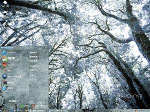 茂密的树林电脑主题