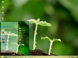 萌芽植物电脑主题