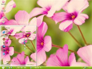 小清新大自然花卉电脑主题