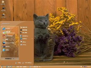 可爱家猫电脑主题
