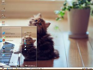 弹琴的小猫电脑主题