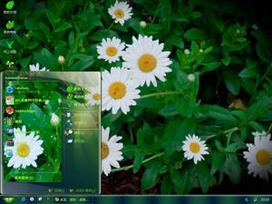 鲜花绿叶电脑主题