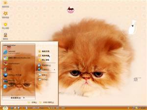 郁闷的小猫电脑主题
