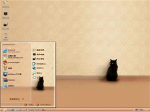 孤独的猫咪电脑主题