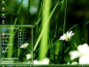 微观绿色植物电脑主题