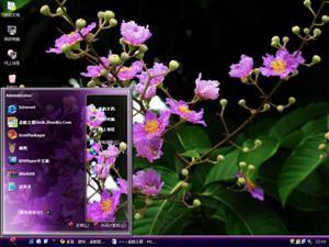 紫藤花电脑主题