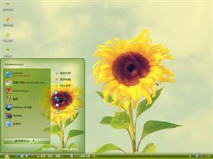 阳光下的向日葵电脑主题
