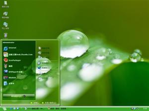 绿叶露珠电脑主题