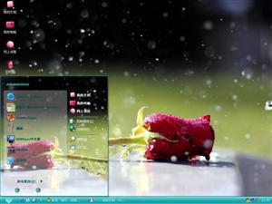 雨中玫瑰电脑主题